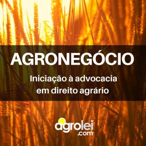 AGRONEGÓCIO (1)